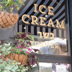 גלידה גולדה סוזן דלל