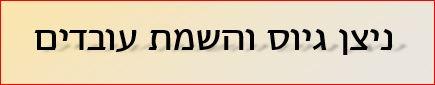 ניצן גיוס והשמה