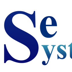 Wise Systems