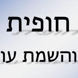 חופית גיוס והשמה